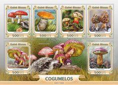 GB16001a Mushrooms (Amanita muscaria, Leccinum aurantiacum, Boletus calopus, Morchella esculenta, Tricholomopsis rutilans)
