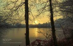 Frozen landscape! by patthom974 via http://ift.tt/2mzwh0V