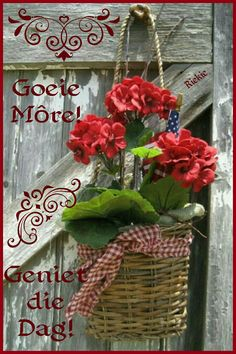 Goeie More, Afrikaans Quotes, Coffee Love, Pretty Pastel, Good Morning Quotes, Deep Thoughts, Garden Ideas, Advice, God