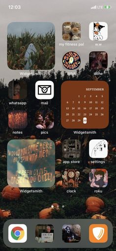 12 iOS 14 Fall Aesthetic Home Screen Ideas - STRAPHIE