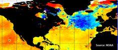 Cold Atlantic 'Blob' puzzles scientists