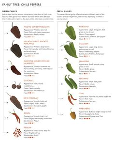 All You Need To Know About Dried Chiles – Food Republic