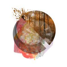 "Chris Cromwell 2014 ""Spiral Forest"" || Digital Art / Photo Manipulation   #Art #Design #Photoshop #Creativity #ChrisCromwell #cromwellcreativity"
