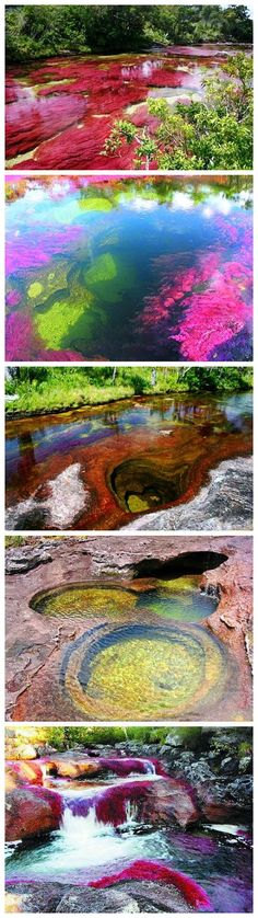 "Caño Cristales River, Colombia Also referred to as ""the river of five colors,"" this biological wonder turns a striking red color every fall thanks to a rare plant species that flourishes on its sandy floor."