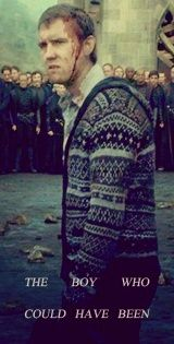 Hogwarts Alumni: Neville Longbottom's Nickname