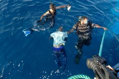 August 23, 2014: Members of Libya's coast guard recover the body of a migrant off the coast of Tripoli. A wooden boat carrying up to 200 migrants sank just one kilometre off the Libyan coast, with most passengers feared drowned (Reuters)