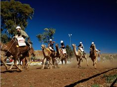The 10 best days to see Australia | Camel Cup, July At Alice Springs