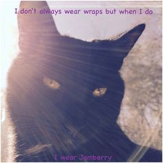 Even cool cats love Jams Http://tracydonaldson.jamberry.com