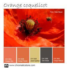 Une palette de teintes tonique et audacieuse qui pourra fonctionner pour des ambiances contemporaines ou classiques. www.chromaticstore.com #idée #couleur #déco #orange