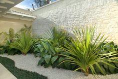Jardín de piedra y plantas de bajo consumo de agua.
