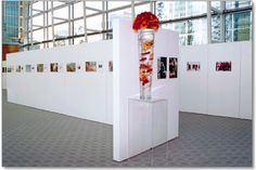 Connect display boards Display Boards, Connect, Photo Wall, Space, Gallery, Home Decor, Floor Space, Photograph, Decoration Home