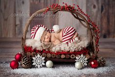 twig beds ~ for newborn sessions or possibly small pet photos ~ $62 | from Intuition Backgrounds | photo by Caralee Case Photography