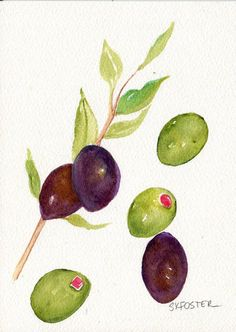 Olives and Olive Branch watercolor painting by SharonFosterArt
