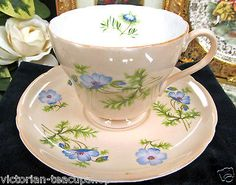 SHELLEY TEA CUP AND SAUCER PEACH COLOR WITH BLUE FLOWERS