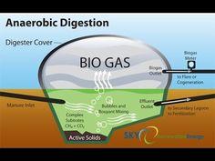 ▶ Biogas generator, Biogas digester - YouTube