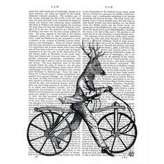 LAMINA CYCLEDEER 20X25.5   Mimub.com