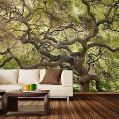 Japanese maple wall mural decal