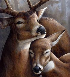 As Cosy As Can Be — deeyr: Clair de Lune (Moonlight), Claude. Wildlife Paintings, Wildlife Art, Animal Paintings, Animal Drawings, Deer Photos, Deer Pictures, Animal Pictures, Hunting Art, Deer Art