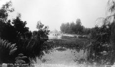 An early view of Eastlake Park. Courtesy of the Security Pacific National Bank Collection, Los Angeles Public Library.
