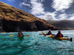 Sea-kayaking at Pohatu marine reserve. New Zealand fur seals, penguins and many species of sea birds are found around the bay.