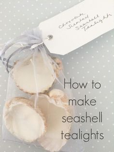 how to make seashell tealights - fun nature / candle craft or gift idea