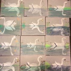 3rd Grade Swan bird reflections