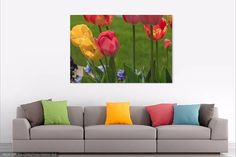 Red Tulips, Home Decor, Wall Art, Photography, Print, Boutique Decor, Flower Photo, Flower Print, Home Art, Office Art, Spring Flowers