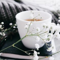 Join our Tease Tea Pinterest boards for all things tea, design, and decor.  Check us out on IG: @Tease_Tea  Shop at: www.teasetea.com  Like us on Facebook too!