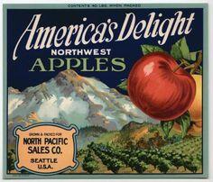 *Original* AMERICAN EAGLE Patriotic Bird Dinuba Grape Crate Label NOT A COPY!