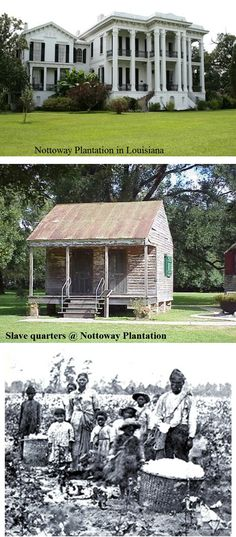 Slaves picking cotton slavery photos pinterest see for Civil war plantation homes for sale