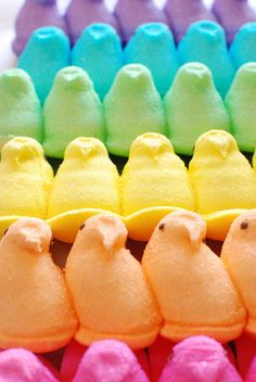 Peeps! #easter #peeps MY YOUNGEST DAUGHTER'S FAVORITE FOR EVERY OCCASION! Easter Wallpaper, Holiday Wallpaper, Food Wallpaper, Easter Treats, Easter Peeps, Hoppy Easter, Easter Bunny, Easter Party, Easter Food