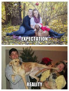 Funny Memes About Life, Crazy Funny Memes, Stupid Memes, Haha Funny, Stupid Funny, Funny Jokes, Hilarious, Sick Meme, Expectation Vs Reality