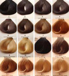 Tabela de cores de tintura capilar.