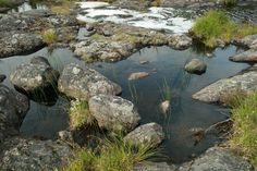 У реки Умба, в районе водокачки