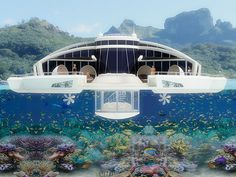 Who needs a cruise with this as your home??? Future in houseboats solar_resort_02