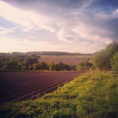 Jakbyście zapomnieli jak wygląda ładna pogoda :) #pogoda #ładna #słonecznie#wieś#rural #good #weather #krajobraz #widok #widoczek#horyzont #trawa #pole #chmury #niebio #cloud #clouds #sunny#sky