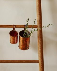 Copper Cups - Lostine