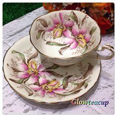 "(@glowteacup) on Instagram: ""Cream Paragon Orchid tea cup and saucer. #teacup #teacupcollector #teacupandsaucer…"""