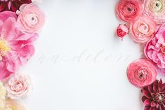 Styled Stock Photo, Pink Flowers 4 #flowers #flower