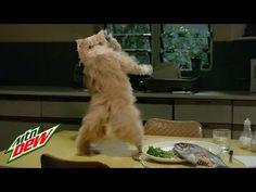 Mtn Dew Kickstart: Freak Chain (REVERSE) - YouTube