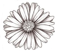 I want a daisy tattoo with Aries constellation in the center