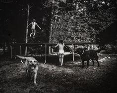 trampoline. photo