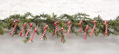 KP Creek Gifts - 12/Pkg, Candy Canes. Adorable ornaments sell as a set of 12 and look great when paired with your favorite holiday garland! Perfect for both farmhouse and country decor.