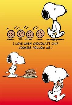 I love when chocolate chip cookies follow me!