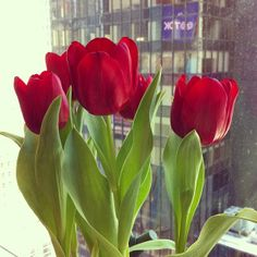 From the Glamour Instagram: It's officially spring, and we have tulips in the office to celebrate!