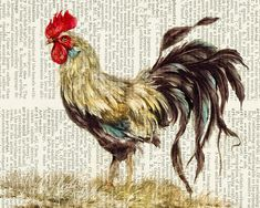 rooster print, vintage painting printed on vintage dictionary page