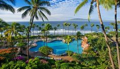 hyatt regency maui resort in kaanapali - some of maui's best pools (plus flamingos and penguins!)