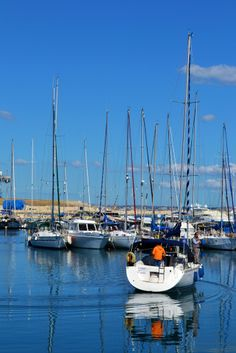 Marina in Larnaca, Cyprus near to fig tree holiday villa, www.figtreevilla.com