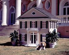 Image detail for -maybe you d like to build your boxer or labrador a mansion but you ...