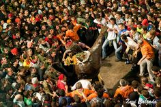 The Patum of Berga, one of the festivals more emblematic of Catalonia